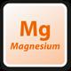 Magnesio Mg